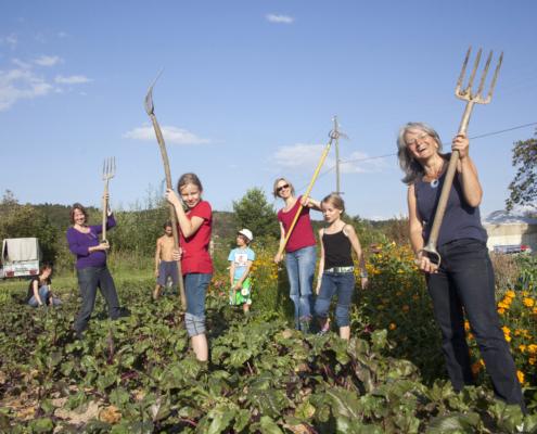 Solidarische Landwirtschaft –  Arbeit, Kosten, Ernte und Risiko teilen