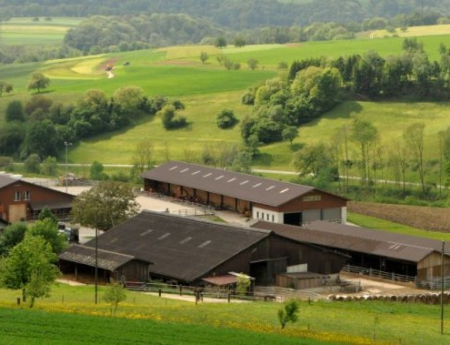 Gründelematthof und Stone Ranch