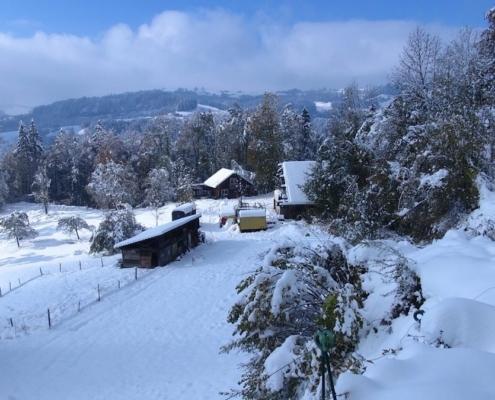 Permakulturhof Chuderboden im Winter