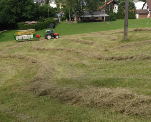 Das Gras wird knapp…