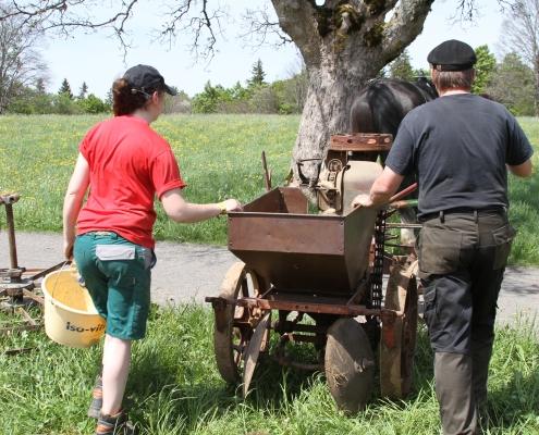 Bei der Arbeit mit Pferden in der Landwirtschaft gibt es verschiedenste traditionelle und moderne Geräte – auf terrABC werden viele von ihnen vorgestellt