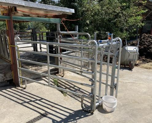 Mit Genehmigung ist das Töten im Stall und auf der Weide von Nutztieren in der Schweiz jetzt offiziell erlauft – hier eine Vorrichtung für die Hoftötung