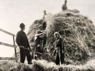 Der klassische Bauernhof in den 50er und 60er Jahren in Westfalen sah deutlich anders aus als viele der heutigen oft spezialisierten Betriebe.