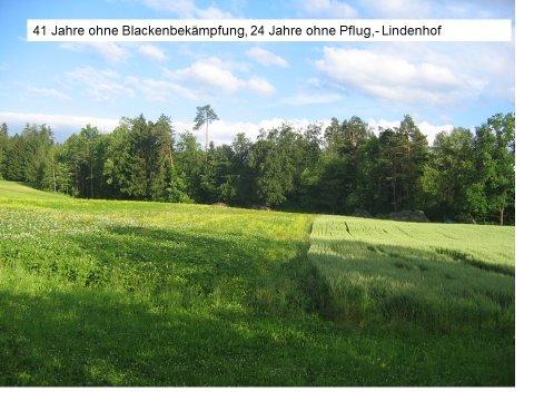 Ernst Frischknecht hat auf seinem Betrieb im Tun immer viel beobachtet und ausprobiert, wieder beoabchtet und wieder probiert – mit viel Erfolg für seinen Betrieb und wertvollen Erkenntnissen für den Biolandbau